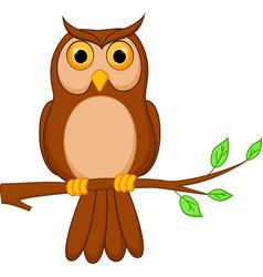 owl cartoon standing on tree vector image
