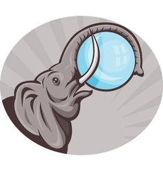 African elephant with sphere ball vector