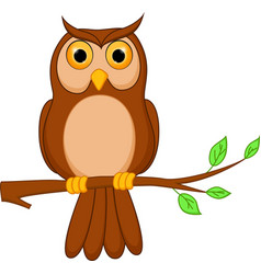 Owl cartoon standing on tree vector