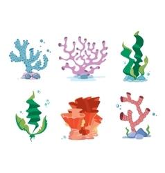 Reef corals seaweeds underwater wildlife plants vector