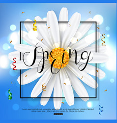 Chamomile spring flower on blue background vector
