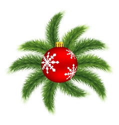 Christmas ball on pine vector image