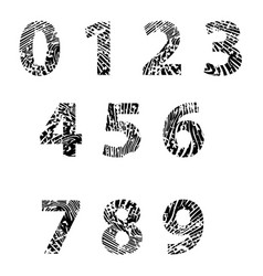 embossed numbers for education vector image