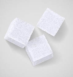 Lump sugar vector