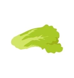 Green salad banner healthy food concept vector