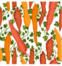 hand drawn beetroot carrot pattern vector image vector image