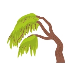 Weeping willow icon in cartoon style vector