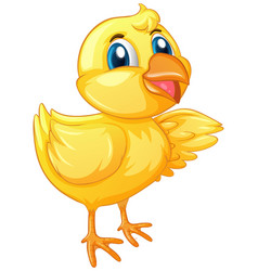 Cute chick on white background vector
