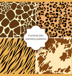 skin seamless patterns vector image