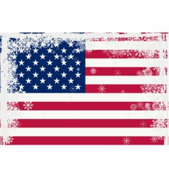 American flag with snowflakes vector image