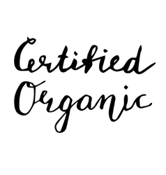 Certified organic hand drawn lettering card vector