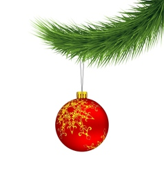 Red Christmas ball on pine branch isolated on vector image