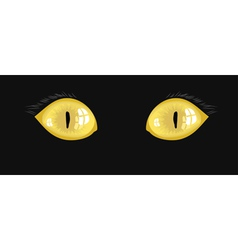 Yellow cat eyes vector