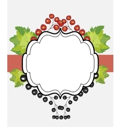 Hand drawn label currants vector