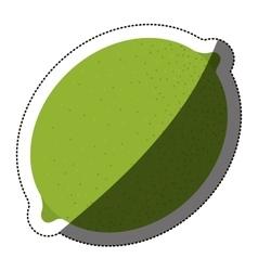 Isolated lemon fruit design vector