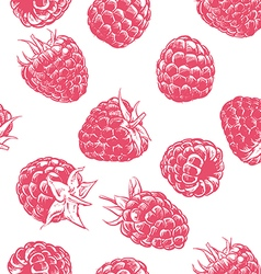 Raspberry pattern Hand drawn fruit berry vector image vector image