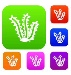 seaweed set color collection vector image