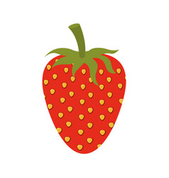 White background of strawberry fruit to color vector