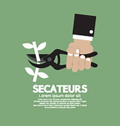 Secateurs gardening tool vector