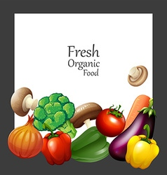 Fresh vegetables and banner vector image