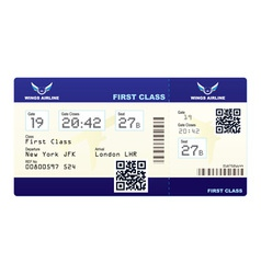 fake plane ticket vector image