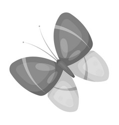 Spring butterfly easter single icon in monochrome vector