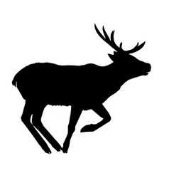 Decoration elegance horned object shadow buck doe vector