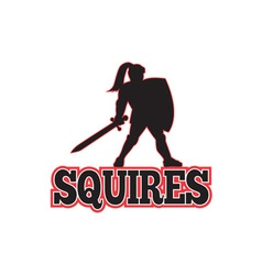 Knight silhouette squires sword shield cartoon vector