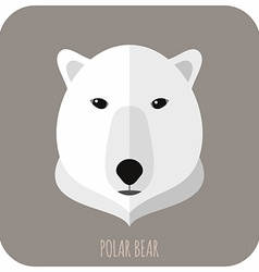 Animal portrait with flat design polar bear vector