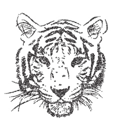 Original artwork tiger with dark stripes isolated vector image