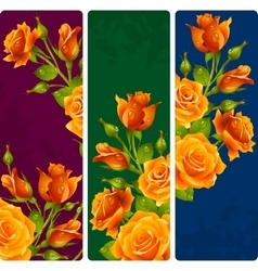 Yellow rose frames set vector