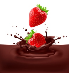 Strawberries with chocolate vector