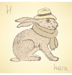 Sketch fancy hare in vintage style vector