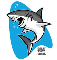 Great white shark vector