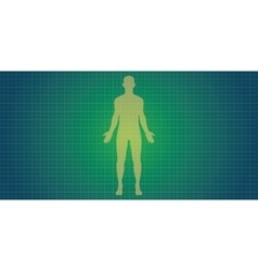human body silhouette vector image