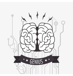 Human brain and circuit icon image vector