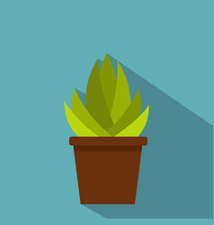 Succulent in flower pot icon flat style vector