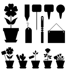 flower labels vector image