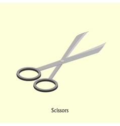 scissors for beauty salon Isometric vector image