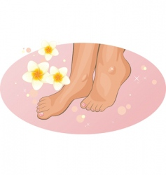 Feet with frangipani flowers vector