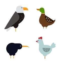 Birds set isolated vector