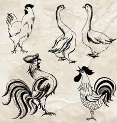 Birds02 vector image vector image