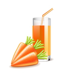 Carrot juice isolated on white vector image vector image