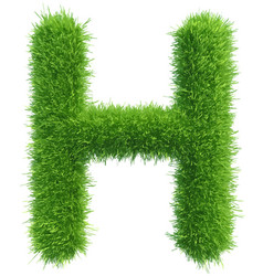 Capital letter h from grass on white vector