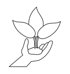 Hand holding plant leaves thin line vector