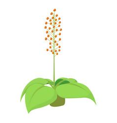 Home flower icon cartoon style vector