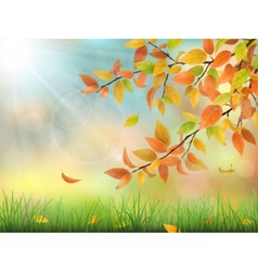 Autumn leaves grass and drops vector
