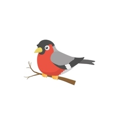 Bullfinch bird icon cartoon style vector