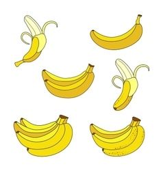 Collection of different overripe bananas vector