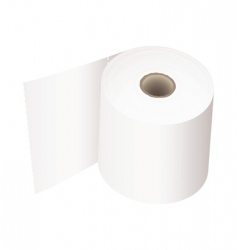 toilet roll white vector image